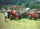Dammbach2007_12
